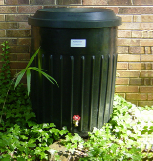 rainbarrel image
