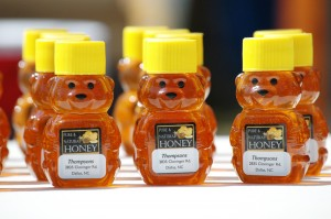 Honey Bears for Sale