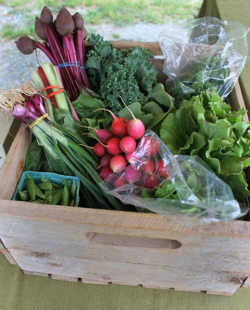 Spring CSA share from Dutch Buffalo Farm