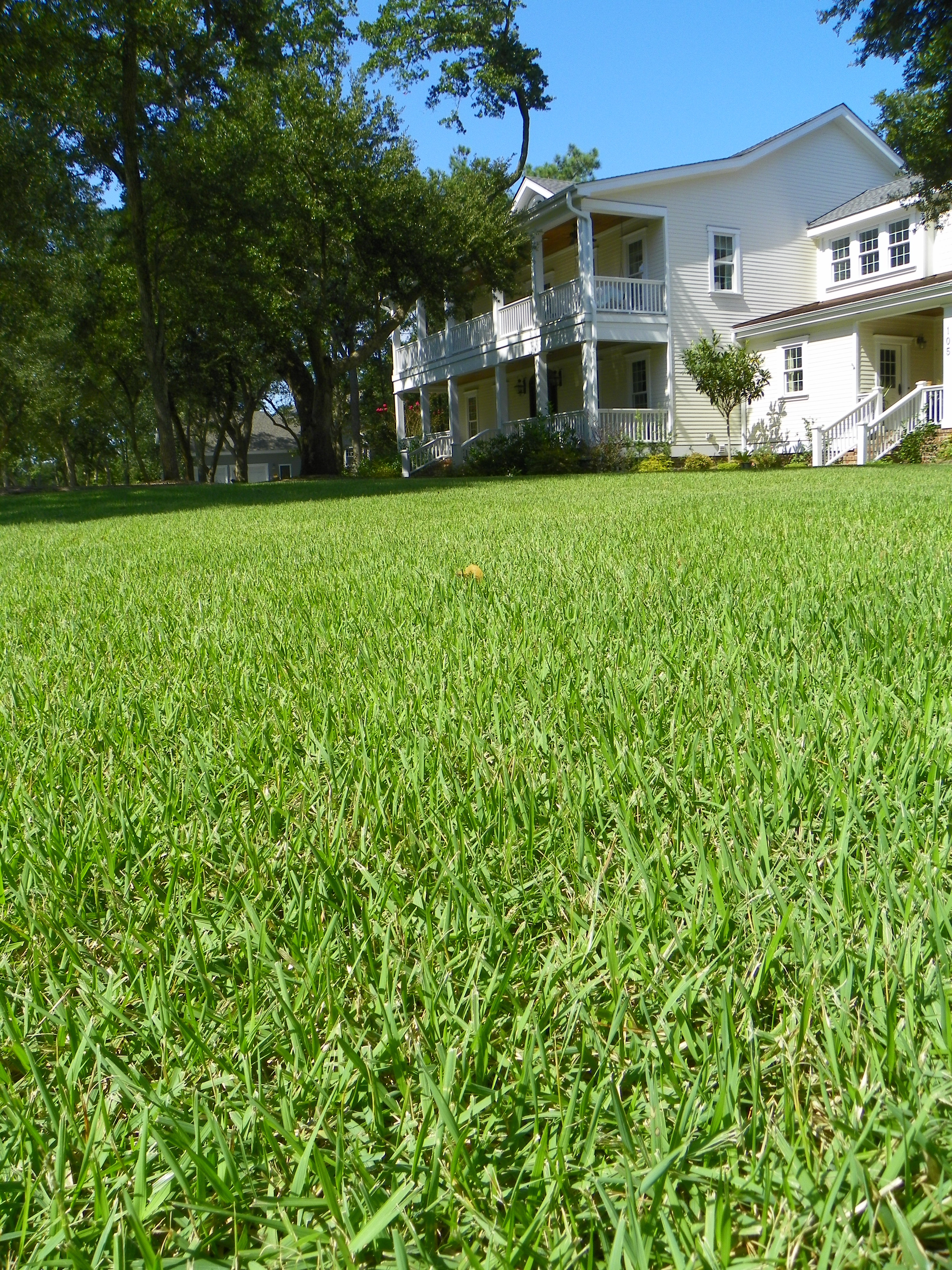 fall lawn care tips and tasks north carolina cooperative extension