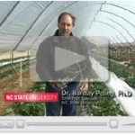 Dr. Barclay Poling discussing frost and freeze strategies