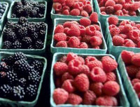 blackberries and raspberries in crates