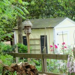 Garden photo with bird house