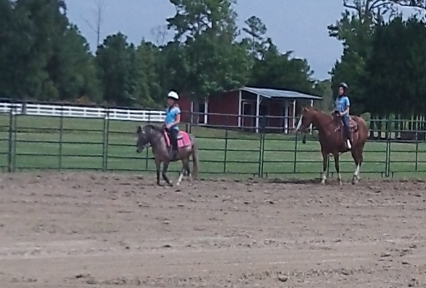 Currituck County 4-H Horsemanship Clinic | North Carolina ...