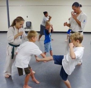 Kyoshukin Karate and Japanese Culture Camp
