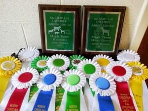 Livestock Judging awards 7-2013