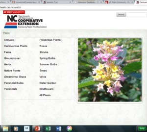 Searchable Database of Plants