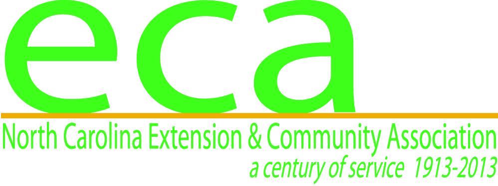 ECA Centennial Logo Take 4
