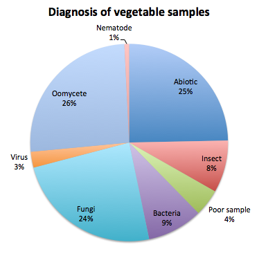 Diagnosis of vegetable samples