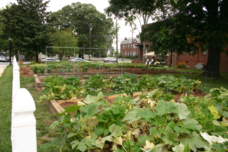 Community Gardens Funding Opportunities | NC State Extension