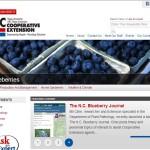 Blueberry Portal
