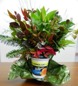 A foil covered yogurt cup serves as a perfect vase for miniature arrangements of fresh greenery.