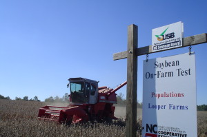 Harvesting N.C. Cooperative Extension research plots at the Looper Farm in Caldwell County. This project demonstrated the yield response of soybeans planted at various seeding rates. This type of information is used by farmers to increase profitability by increasing production.