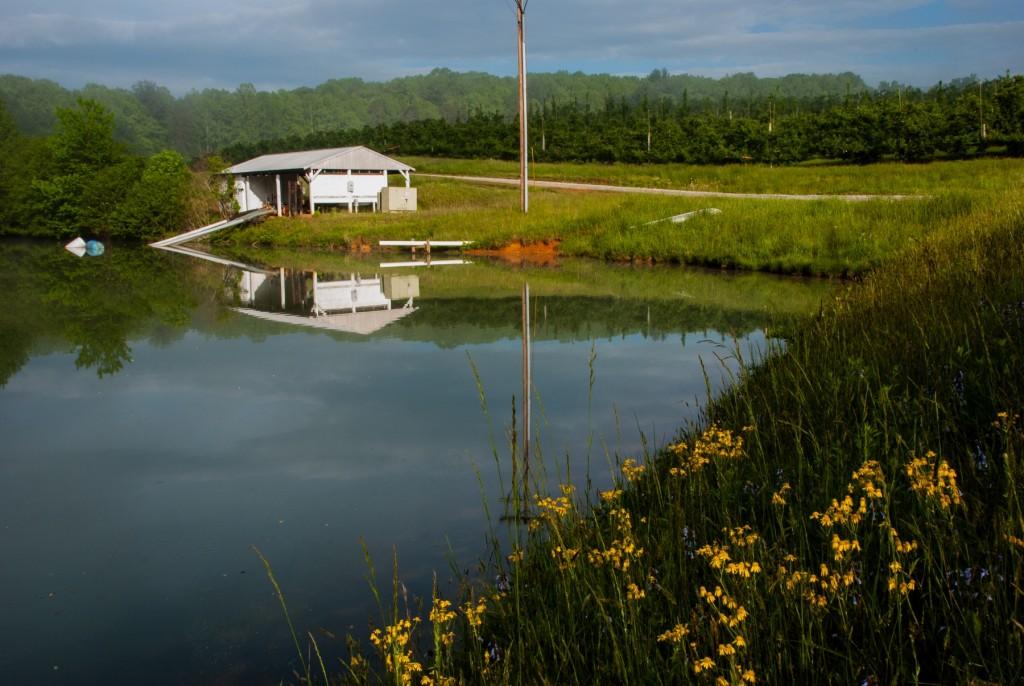 MHCRS spray pond 011
