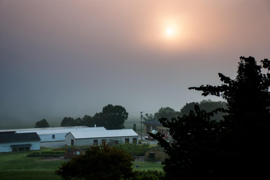 Sunrise, MHCRS (july) 004