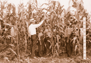 An Extension agent talks to farmers about corn production. This photo, by the late Extension editor Frank Jeter, was probably taken in the 1930s.