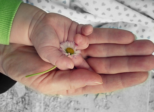 hands-105455_640
