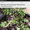 Weeds Identification - Weeds of Container Nurseries