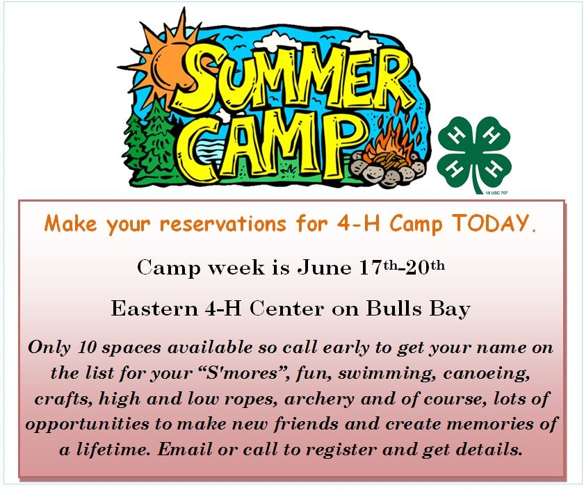 2014 4-H Camp postcard