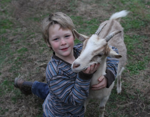 8 year old Dennet with one of the dairy goats