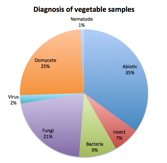 Figure 2: Diagnosis of vegetable samples during 2013