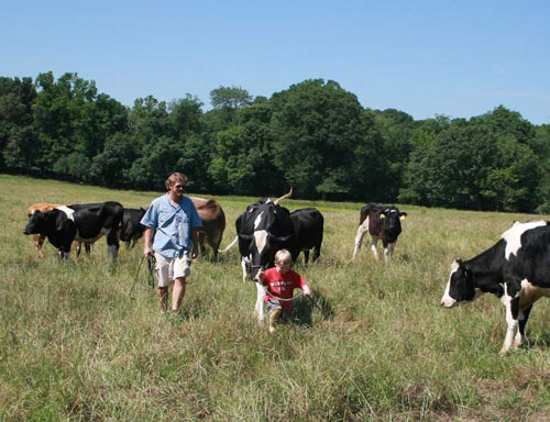A much younger Dennet helps his Dad with the cattle