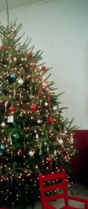 Edwards_decoratedtree