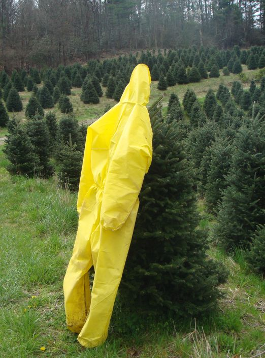 pesticide applicators spray suit hanging on a Fraser fir