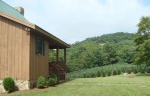 Residence near a Christmas tree farm