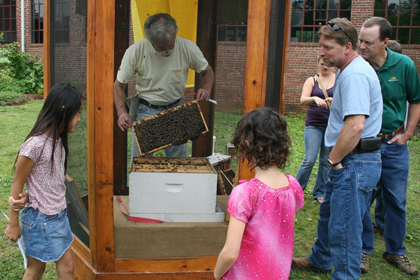 Don Hopkins removes a frame of bees to show what goes on inside a bee hive.