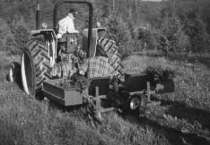 Machine planting of trees