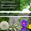 Weed InfoSearch