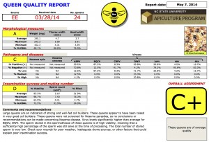 Scanned image of example Queen Bee Clinic Report