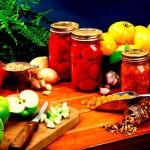food-preservation-ensemble
