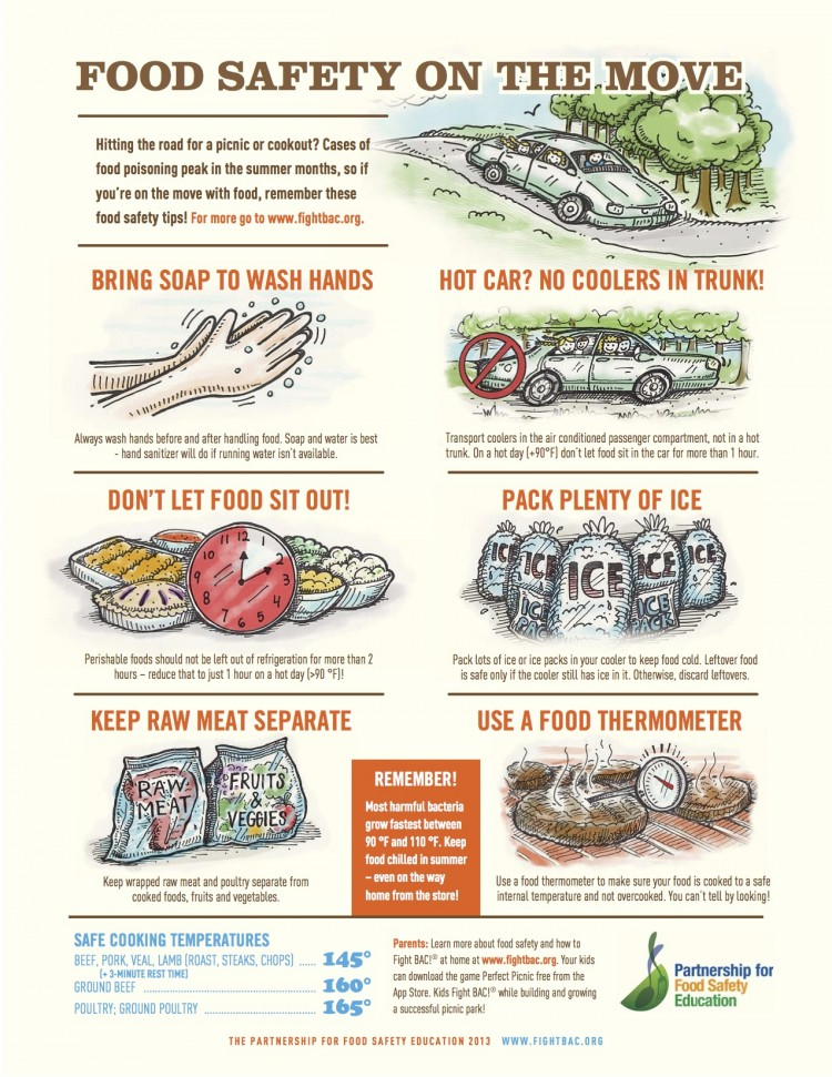 Image result for food picnic safety