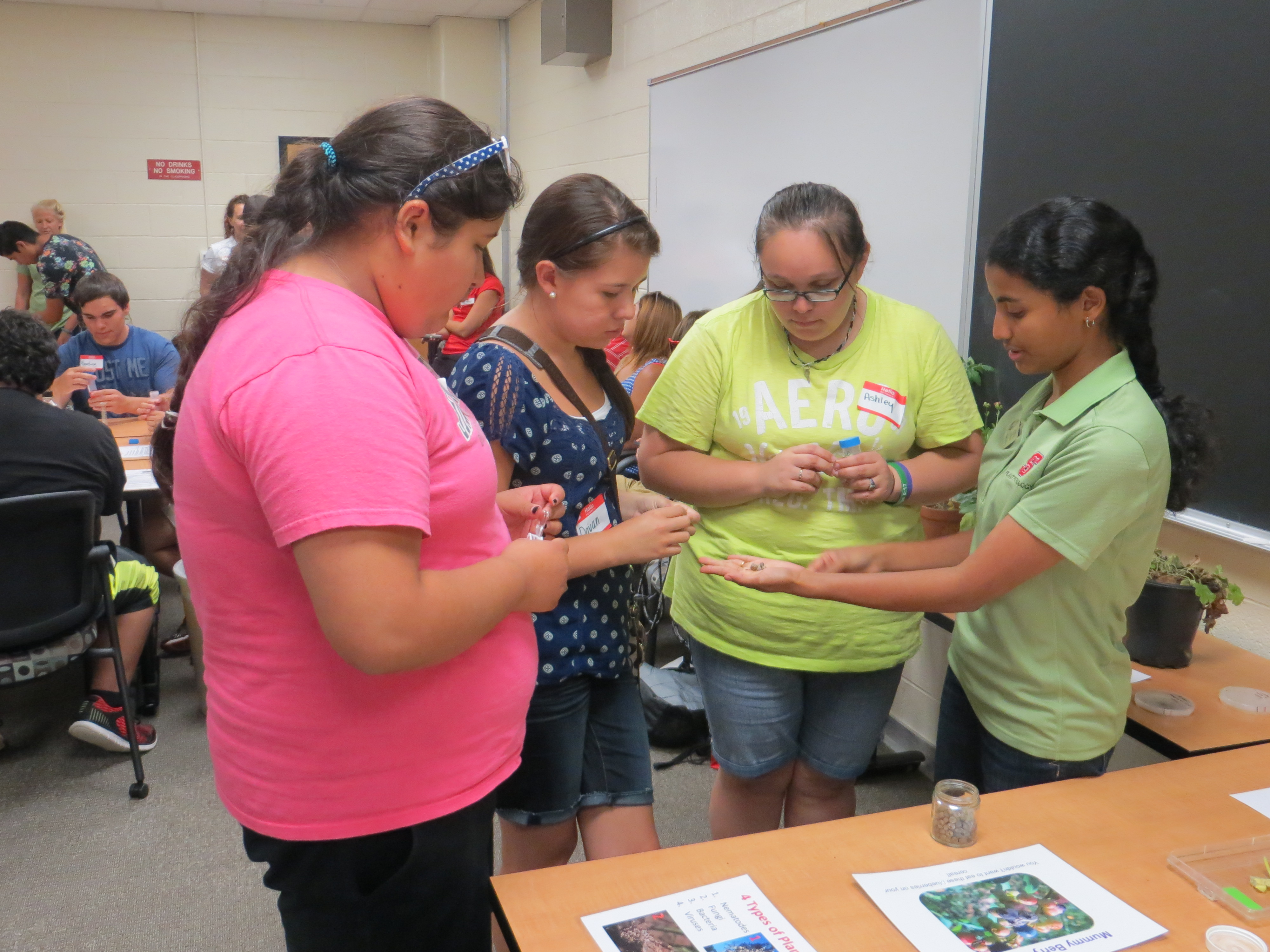 Graduate Student Anna Thomas shows high school students mummy berry disease samples. Photo Credit: Alyssa Koehler.