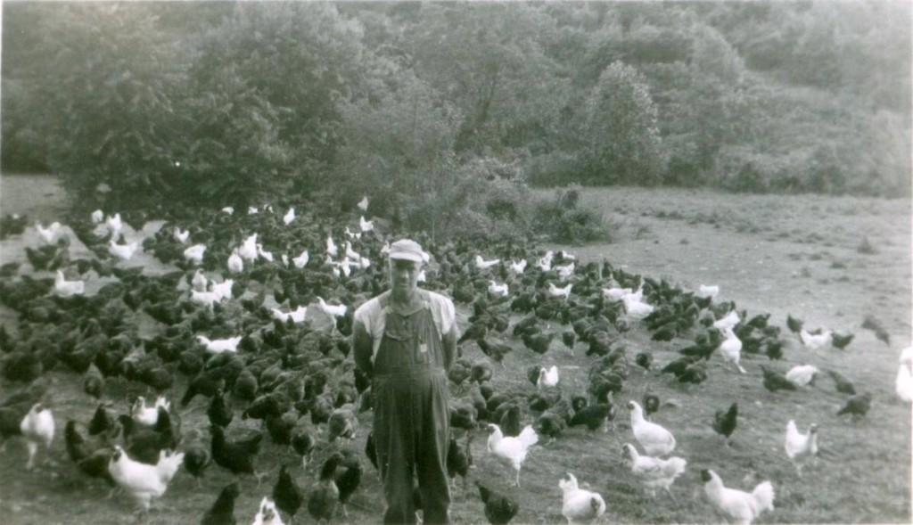 Swain County poultry farmer - Candler Barker.