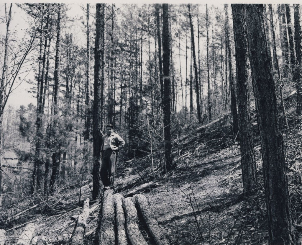 1959 - SCS Soil Scientist John Turpin looking over completed woodland Improvement Demonstration on Claude Cunningham Farm. (Swain County Soil & Water picture)