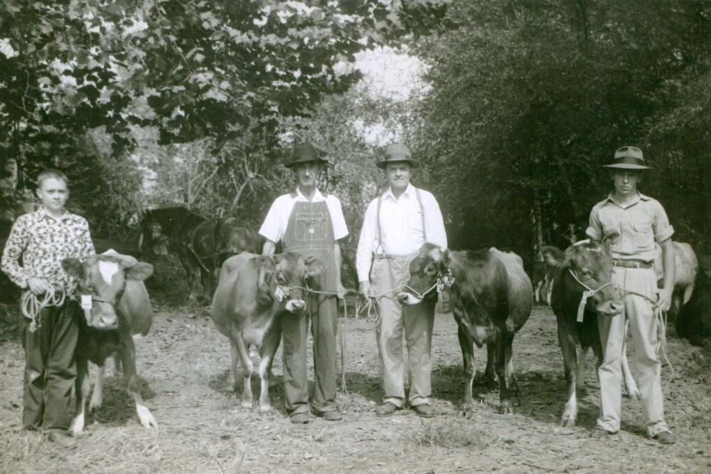 Swain County Livestock Show