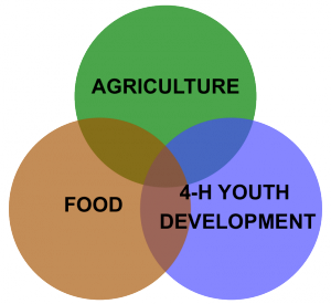 Extension Service Core Program Areas graphic