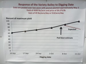 graph of yield over digging date
