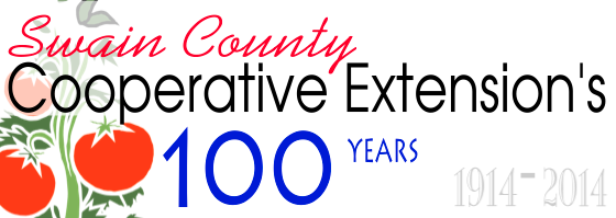 Extension's100YearsBanner