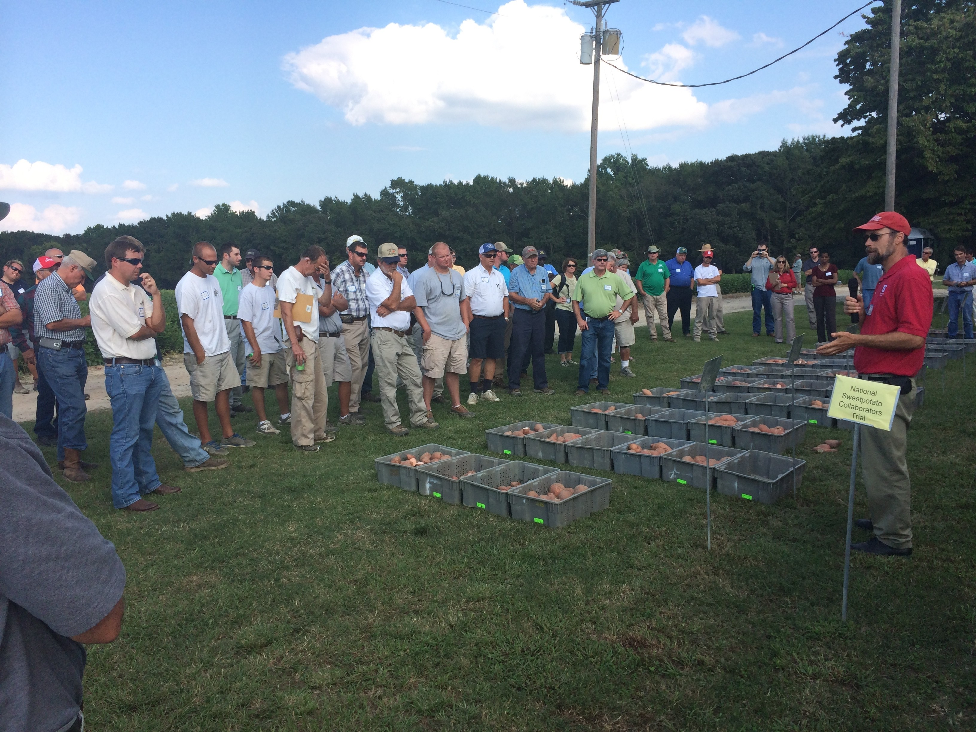 Ken Pecota provides information regarding new releases and advanced selections in the National Sweetpotato Collaborators Trial at the 2014 NC Sweetpotato Field Day.