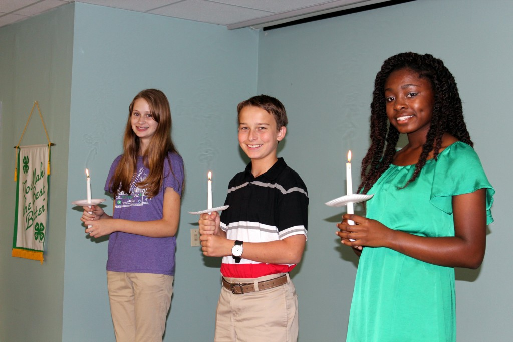 2014-2015 New Hanover County 4-H Teen Council Officers