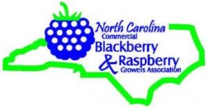 NC Blackberry Logo