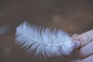 Alex Cassavaugh holds a turkey feather. Photo by Darlene Berry.