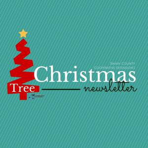 Swain County ChristmasTree News