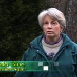 2-February-Linda-Blue