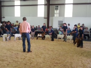 23rd Annual Hyde County 4-H Livestock Show