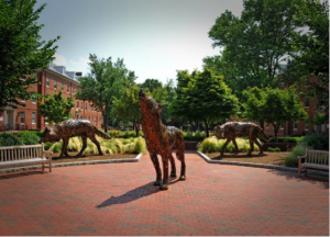wolf statues at NC State